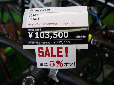 P1080378_800x599